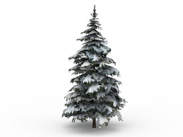 Winter snow spruce tree 3d rendering
