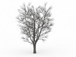 Bare elm tree in winter 3d model preview