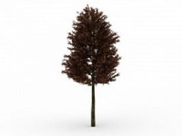 Red pine tree 3d model preview