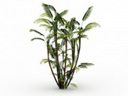 Butterfly palm plant 3d model preview