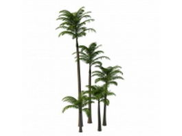 Alexander palm trees 3d model preview