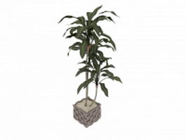 Potted indoor trees 3d preview