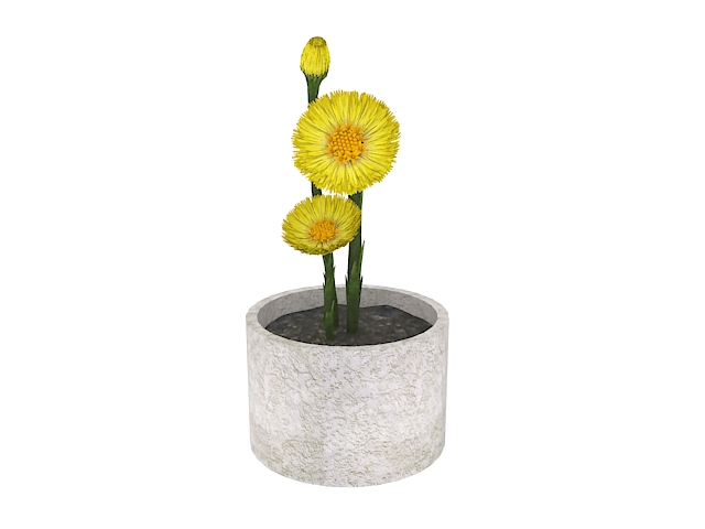 Potted yellow flower 3d rendering