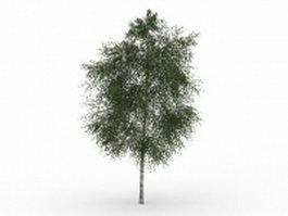 Oregon ash tree 3d model preview
