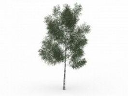 White ash tree 3d model preview