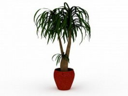Bonsai plant in pot 3d preview