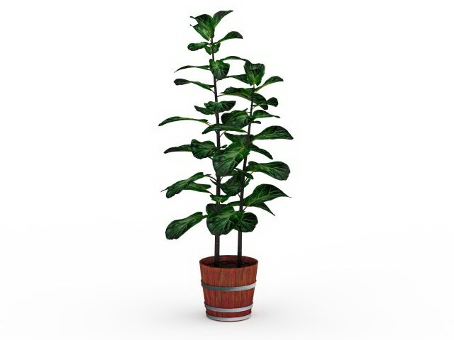 Barrel potted plants 3d rendering