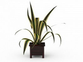 Potted spider plant 3d preview