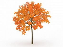 Maple fall tree 3d preview