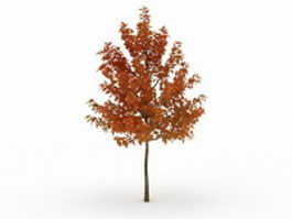 Tree in autumn 3d preview