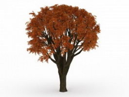 Red maple tree 3d model preview