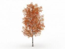 Autumn poplar tree 3d model preview