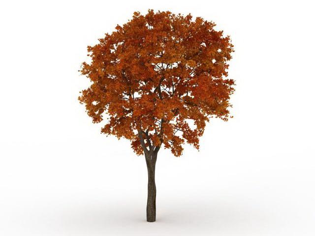 Late autumn tree 3d rendering