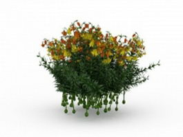 Yellow flowering shrubs 3d model preview