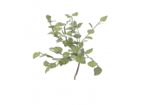 Branch with leaves 3d preview