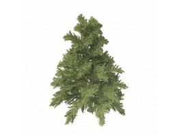 Dwarf coniferous tree 3d model preview