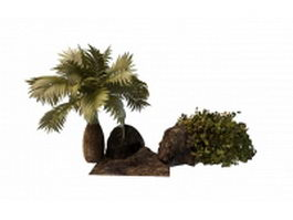 Bottle palm tree and shrub 3d preview