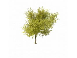 Spring willow branches 3d preview