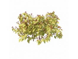 Red berries shrub 3d preview