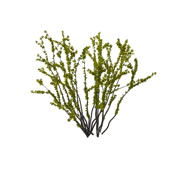 Spring shrub 3d rendering