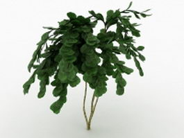 Deciduous tree for garden landscape 3d model preview