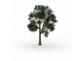 Large tree 3d model preview