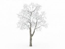 Snow deciduous tree 3d preview