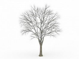 Tree covered in snow 3d model preview