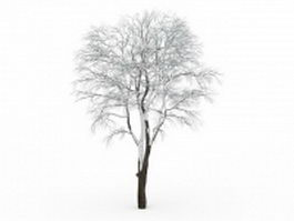 Tall tree covered by snow 3d model preview
