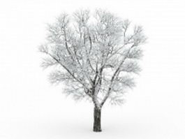 Frost covered tree 3d model preview