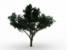 Big green tree 3d model preview