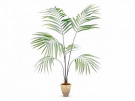Kentia palm tree in pot 3d preview