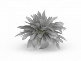 Pot plant 3d preview