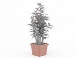 Fruit tree in pot 3d preview