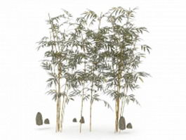 Bamboo for landscaping 3d model preview