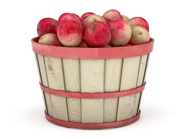 Apples in barrel basket 3d rendering