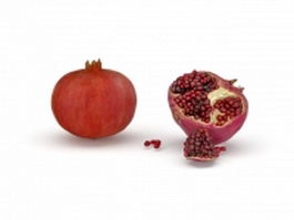 Pomegranate fruit with seeds 3d preview