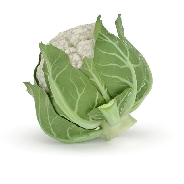 Cauliflower vegetable with leaves 3d rendering