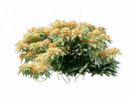 Orange flower shrub 3d model preview