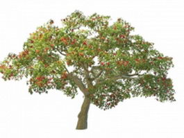 Coral tree with red flowers 3d model preview