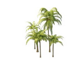 Various styles of coconut palm tree 3d model preview