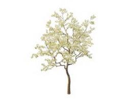 Spring pear tree 3d model preview