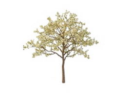 Spring blooming apple tree 3d model preview