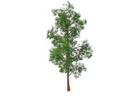 Old red pine tree 3d model preview