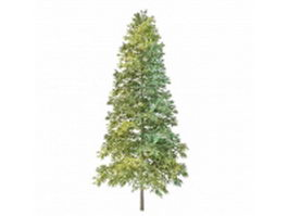 Norway Spruce Christmas tree 3d preview