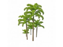 Foxtail palm trees 3d preview