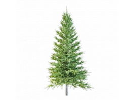 Real Christmas tree 3d preview