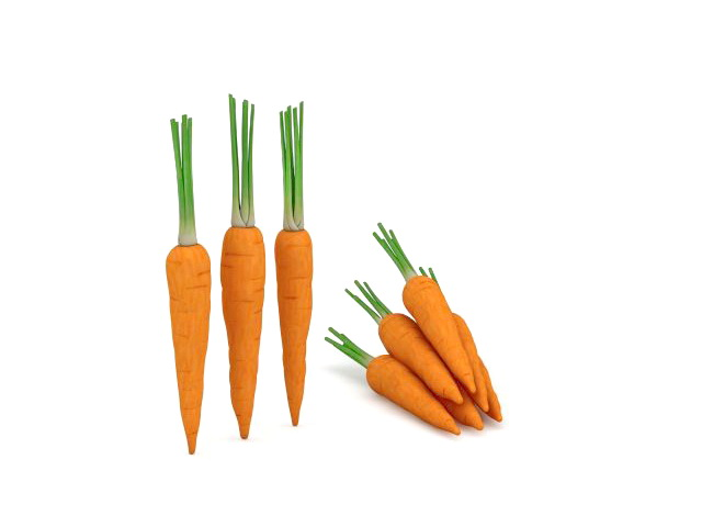 Some raw carrot 3d rendering