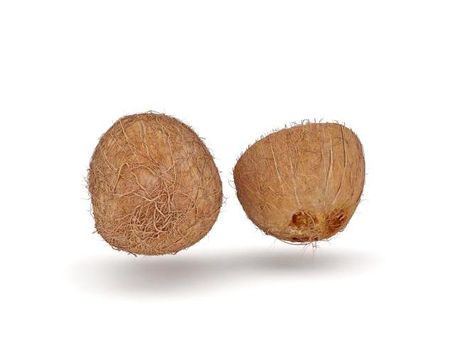 Cut open coconut 3d rendering
