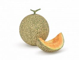 Cantaloupe with slice 3d preview